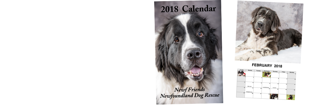 Don't forget your calendar!